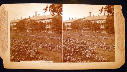 C. 1876 Stereoview Photograph Of Blackwell's Island, New York By Continent Stereoscopic Company. Blackwell's Island.