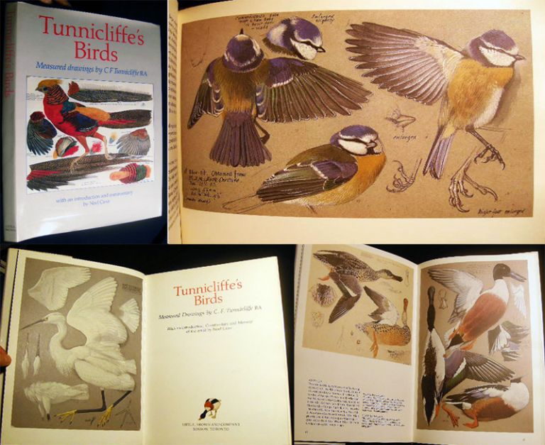 Tunnicliffe's Birds Measured Drawings By C.f. Tunnicliffe RA with an Introduction, Commentary and Memoir of the Artist By Noel Cusa. Ornithology - Tunnicliffe.