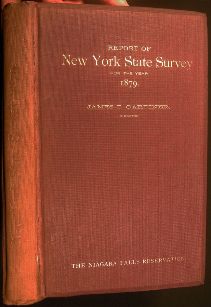 Special Report of New York State Survey on the Preservation of the Scenery of Niagara Falls, and Fourth Annual Report on the Triangulation of the State for the Year 1879. James T. Gardner, Director. Americana - 19th Century - New York State - Niagara Falls.