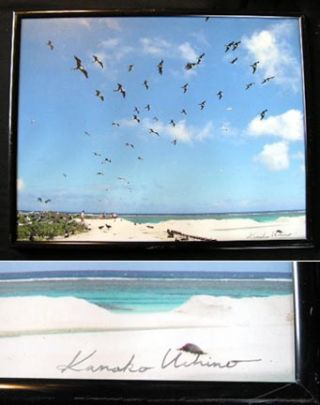 School of 'Iwa' Great Frigate Birds Hawaii Color Photgraph Signed By Kanako Uchino. Kanako Uchino