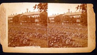 C. 1876 Stereoview Photograph Of Blackwell's Island, New York By Continent Stereoscopic Company....