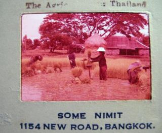 Circa 1958 Group of Color Slides of Bangkok Thailand By Soman Nimit. Photography - 20th Century -...