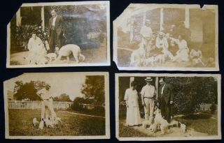 Circa 1920 4 Photographs of the Perkins Family New Orleans with Their Dogs and New Puppies....
