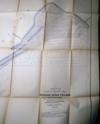 Special Report of New York State Survey on the Preservation of the Scenery of Niagara Falls, and Fourth Annual Report on the Triangulation of the State for the Year 1879. James T. Gardner, Director